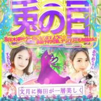 やんちゃな子猫兎我野 すずの写メ 〜宣伝〜