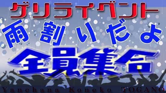 やんちゃな子猫兎我野 雨の日のイベント開催中!